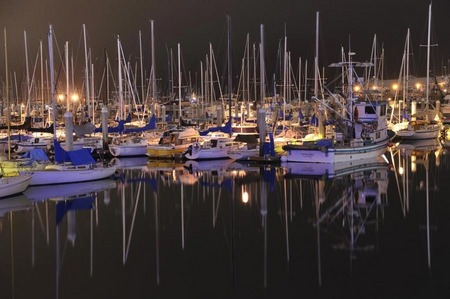 Monterey harbor night