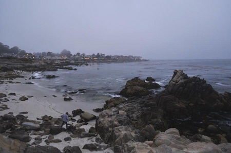 Pacific Grove Beach