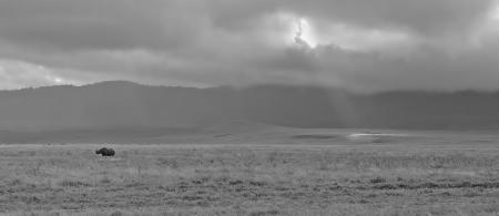 Morning on the Ngorongoro, Tanzania