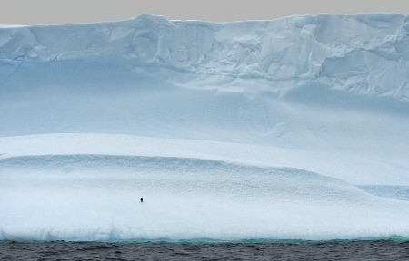 """The Lonely One"" Antarctica"